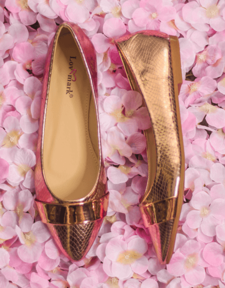 4f7294531ada Rose Gold Pointed Flats